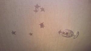 天井に溢れる星々